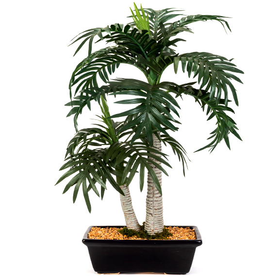 2-in-1 Artificial Coconut Palm Bonsai Tree with Ceramic Pot