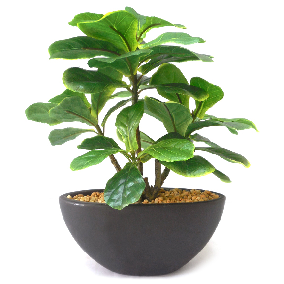 Artificial Fiddle leaf Bonsai Plant with ceramic Pot