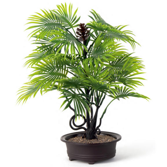Artificial Bonsai Fan Palm Tree With Oval Tray Pot