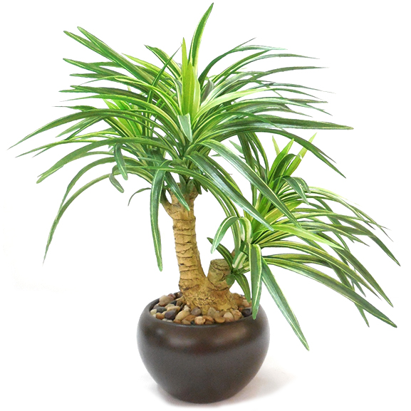Natural Looking Artificial Yucca Bonsai Plant with Ceramic Pot