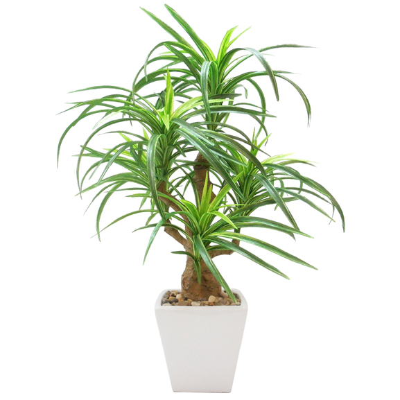 Artificial Yucca Bonsai Plant