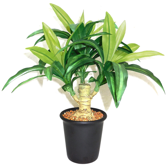 Artificial Dracaena Bonsai Plant With Ceramic Pot