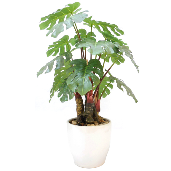Artificial Philodendron Bonsai Plant With Pot