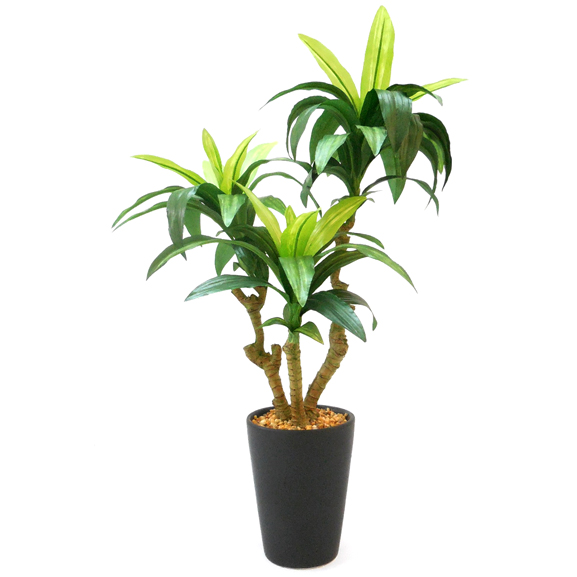 Artificial Dracaena Bonsai Plants With Pot