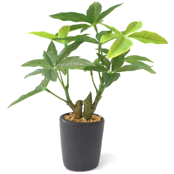 Natural Looking Artificial Pachira Bonsai Plant with ceramic Pot