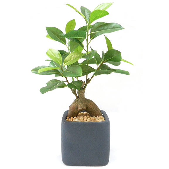 Natural Looking Artificial Ficus Bonsai Plant with ceramic Pot