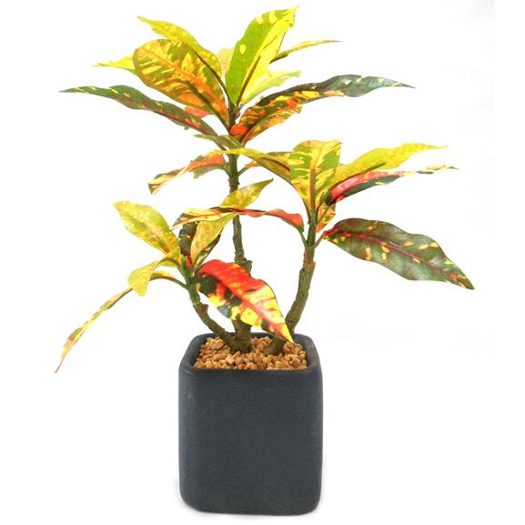 Artificial Croton Bonsai Plant With Pot
