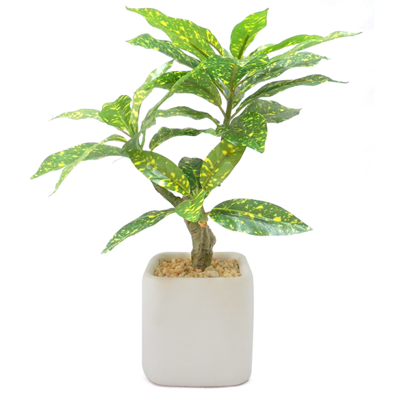 Artificial Croton Bonsai Plant For Decor