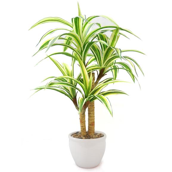 Artificial Dracaena Bonsai Plant With Pot