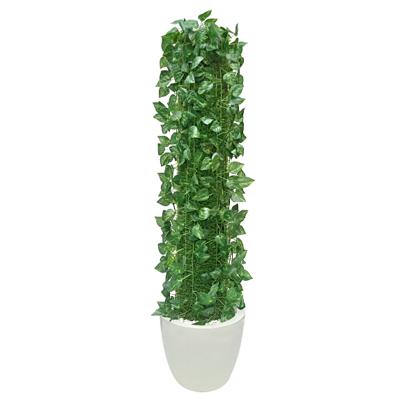 Hand Made Money Plant (3 ft)