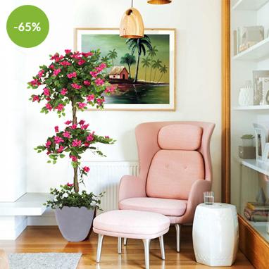 Promotional-Offers-&-Deals-Ad-382-x-382-pixels---NEW